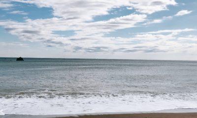 今日の波太の海3